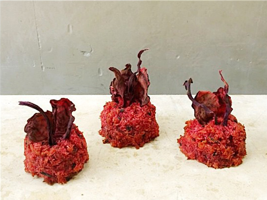 beetroot macaroons recipe by lily vanilli