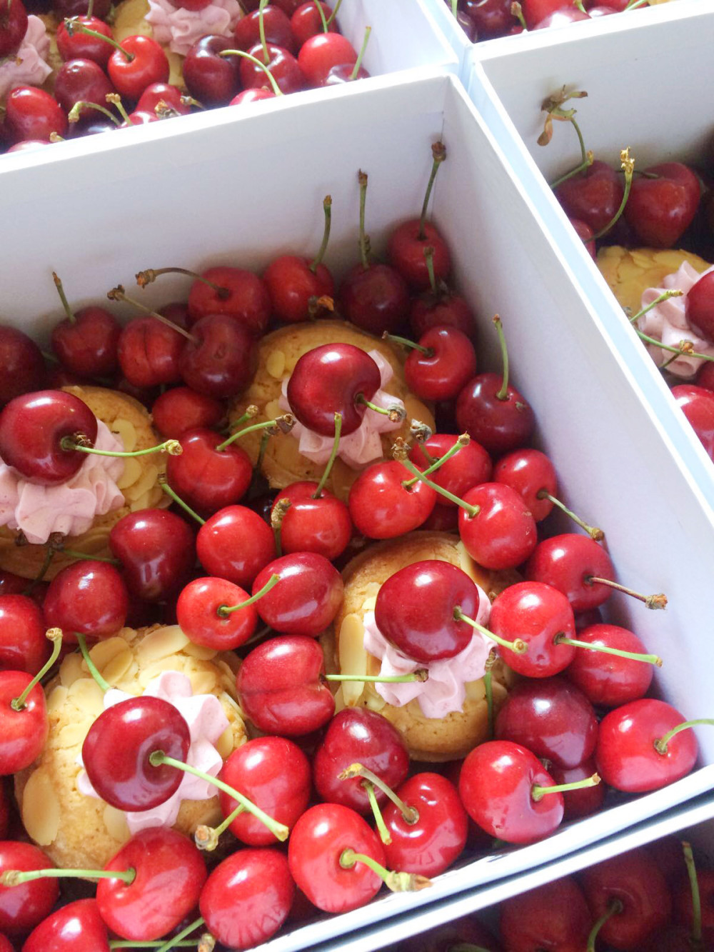 British Cherry Season