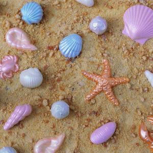 Lily Vanilli Shells